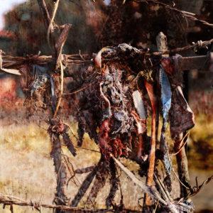 Migrant III -  Color C-type prints - 65x31,7cm